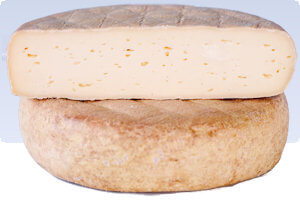 Picture of nickajack cheese
