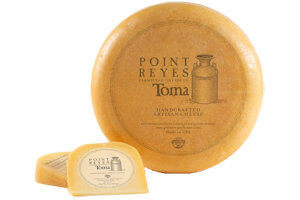 Picture of toma cheese